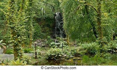 eingestuft, wasserfall, haus,  -, Bucht, grafschaft,  kells,  Version, irland,  Kerry, Gärten