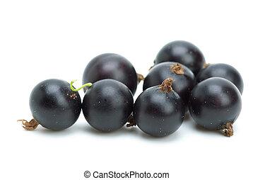 einige, schwarze johannisbeeren