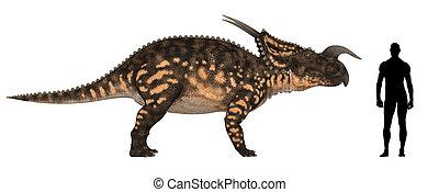 Einiosaurus Size Comparison