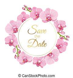 einladen, kranz, phalaenopsis, wedding, blumen-, orchidee