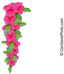 einladung, periwinkle, rosa