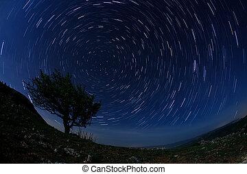 einsam, baum, in, der, nacht himmel, mit, bewegen, sternen