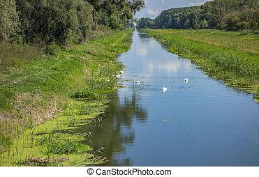 Einserkanal near Bridge at Andau