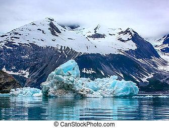 eisberg, gletscher, national, alaska, bucht, park, schwimmend