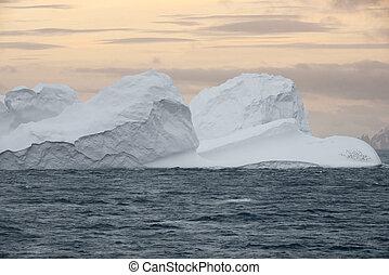 eisberg, nördlich , meerenge, spitze, halbinsel, groß, antarktis, sonnenuntergang, bransfield, antarktisch, schwimmend