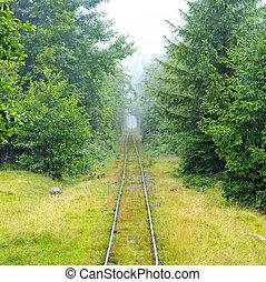 eisenbahn, narrow-gauge, wald