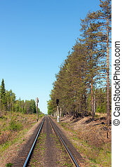 eisenbahn, single-track, wald