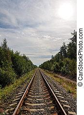 eisenbahn, wald