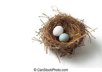 eitjes, nest, vogel, twee