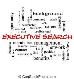 ejecutivo, búsqueda, palabra, nube, concepto, en, rojo, tapas