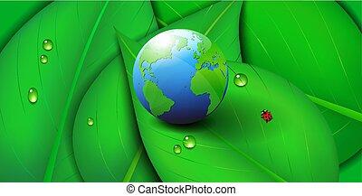 ekologi, blad, symbol, grön fond, mull, värld, ikon