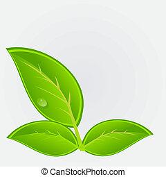 ekologický, ikona, s, plant., vektor, ilustrace