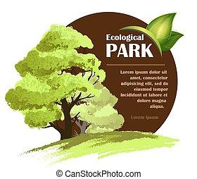 ekologiczny, projektować, szablon
