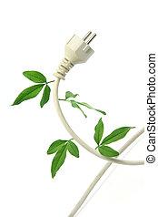 ekologie, a, energie