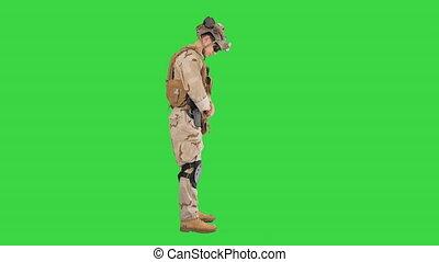 ekran, reputacja, key., żołnierz, nic, chroma, zielony, ...
