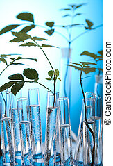 eksperimenter, hos, flora, ind, laborat
