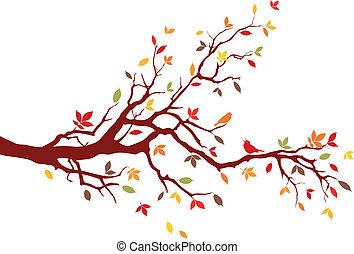 elágazik, ősz