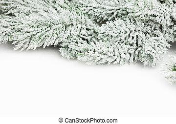 elágazik, közül, karácsonyfa, noha, hó