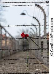 elétrico, cerca, em, anterior, nazista, acampamento...