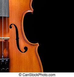 elülső, hegedű, körbevágott, kilátás