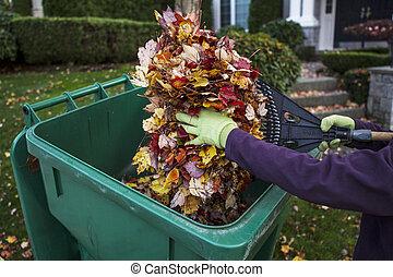 elülső, közben, ősz, udvar, takarítás
