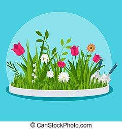 elülső, virág kert, ágy