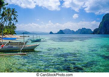 el, água clara, nido, banca, barcos, praia, filipinas, arenoso