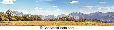 el, andes, patagonia, chalten, argentina, montaña