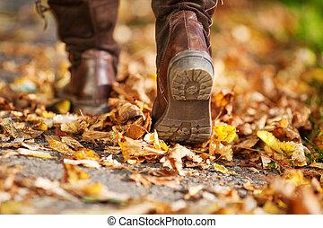 el caminar de la mujer, en, un, calle, lleno, de, hojas muertas