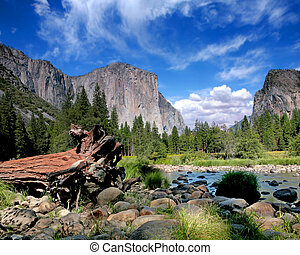 el capitan, aanzicht, in, yosemite, natie, park