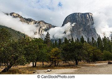 el capitan, dans, parc national yosemite, californie