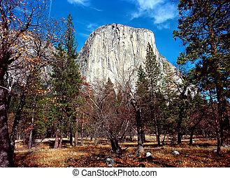 El Capitan Mountain Yosemite