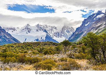 el, cerro, argentina, torre, chalten