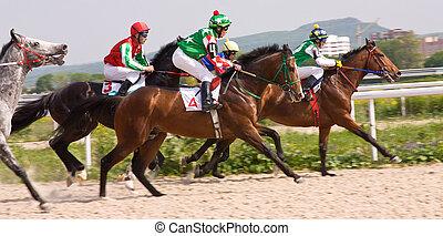 el competir con del caballo, en, el, hipódromo, en,...