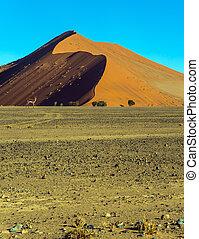 el, desierto de namib