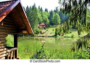 el, en, bosque, de, madera, casas