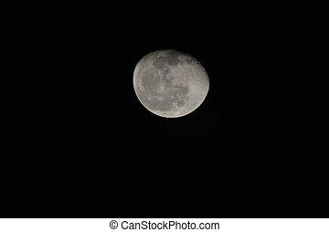 el, Lleno,  Sharm, cielo, contra, luna, jeque, negro