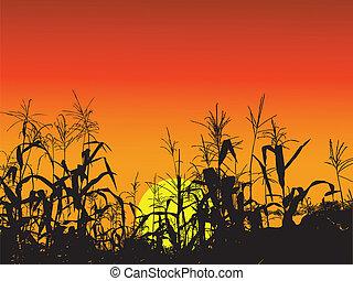 el, maíz, hoja, plano de fondo