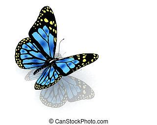 el, mariposa, de, azul, color