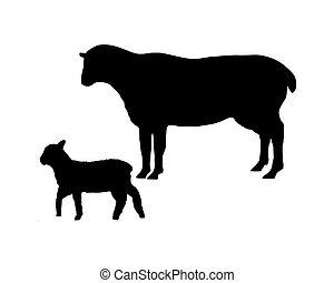 el, negro, siluetas, de, un, sheep, y, un, cordero, blanco