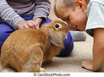 el, niño, con, el, conejo