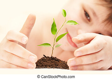 el, niño, observa, cultivo, de, un, joven, plant.