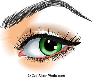 el ojo hace para arriba, vector, ilustración