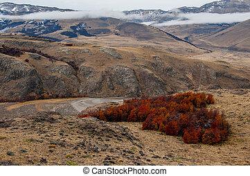 el, otoño, fitz, chalten, argentina, roy