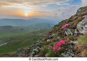 el, parang, montañas, rumania