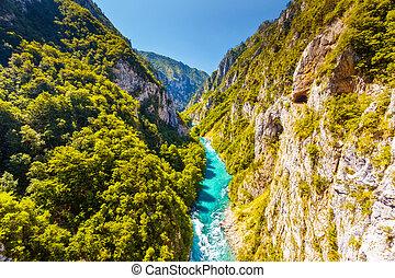 el, piva, río, en, montenegro