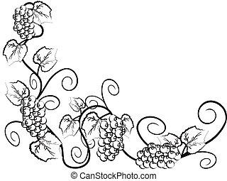 el, plano de fondo, de, enredadera de uva