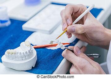 el suyo, oficina, trabajando, prosthetic, odontología, ...