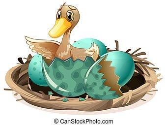 el tramar, feo, nido, patito, huevo