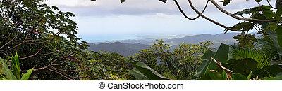 El Yunque Panorama